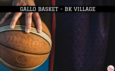 U15 | Gallo Basket – BK Village